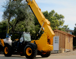 Olive tree installation photos santa barbara montecito california