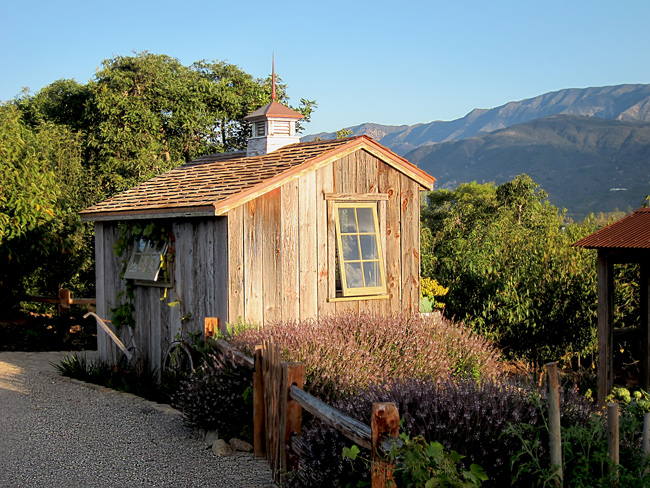 affordable quality garden shed designs and beautiful landscapes by jeff doubet with beautiful sheds